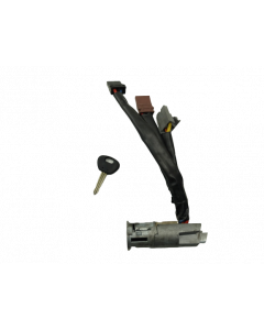 Ignition Switch Aixam 500
